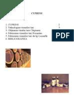 tehnologiea vinurilor tari