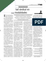 La Libertad Sindical y Sus Modalidades - Autor José María Pacori Cari
