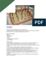 Como Fazer Mudas de Phalaenopsis