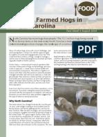 Factory Farmed Hogs in North Carolina