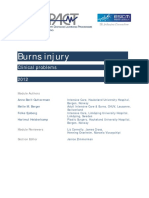 Burns_Injury_3_Dec_2012_final.pdf