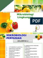 Kelompok 2 Mikrobiologi Pertanian
