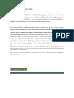 EL TORO DEL ROSAL.docx