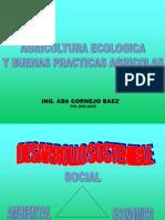 Agricultura ecologica y buenas practicas agricolas MINAG, Ing Ada Cornejo B..ppt