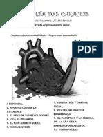 a-revolta-dxs-caracois.pdf