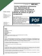 NBR 06601