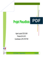 06 PieuxBois Presentation Projet
