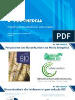 Milas de Sousa Perspectivas e Participacao Dos Biocombustiveis