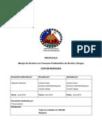 Protocolo Consumo Problematico Alcohol y Drogas 2016