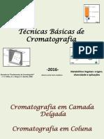 Aula 2 - Técnicas de Cromatografia