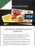 Tema 6 Los Macronutrientes
