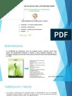 Biodiversidad de Tuberculos y Raices Andinas