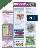 Quick Study - Biology.pdf