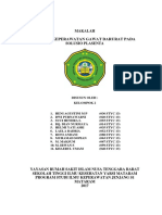 SPPP.docx