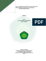 11630061.pdf