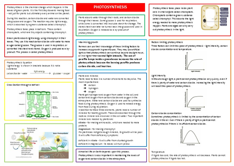 factors required for photosynthesis