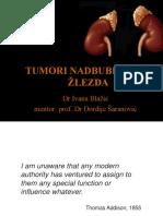 tumori nadbubreznih zlezda.pps