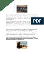 De Junio a Diciembre Los Vientos Alisios Del Sur Traen La Corriente Cálida Humbold Hacia El Norte a Galápagos