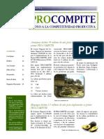 8 Preguntas Frencuentes Implementacion de PROCOMPITE Boletin Ene 2013 N 08