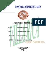 INFORME USO Y APLICASION DE GPS1.doc
