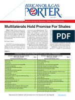 AOGR MLT Promise for Shales