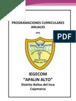 Progrmaciones Anuales APALIN 2009