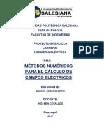 Metodos numericos para el calculo de campos electricos
