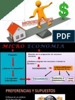 micoeconomia