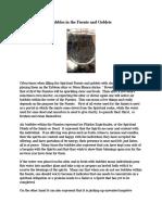 Mesa Blanca Articles.pdf