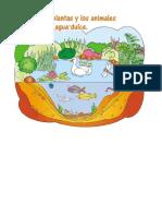 Los Ecosistemas -Imagenes