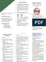 folletodrogas-110307102003-phpapp02