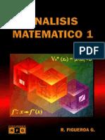 Análisis Matemático - Ricardo Figueroa García