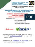 Ventajas y Desventajas Del Sistema de Inversión Snip
