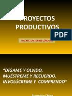 PROYECTOS PRODUCTIVOSICA