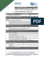 EGPR_090_04 Ejemplo de Plan de Gestion de Schedule