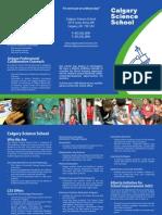 2010 CSS Brochure