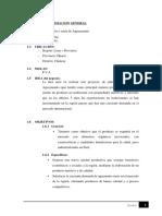 FEP_Proyecto Aguaymanto