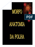 FOLHA 4