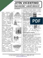 Boletín Biología 20 21 Circulo b Tejidos Vegetales Fitohoronas Copia