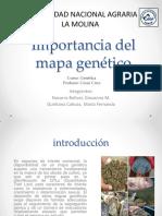Importancia Básica y Aplicada de Los Mapas Genéticos