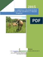 Estudio de Impacto Ambiental Reybanpac