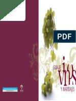 Guía de Vinos y Maridajes.pdf