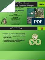 AGENDA 21 -G Los Topos