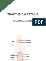 Kuliah 4 - Fisiologi Sistem Pencernaan (Dr. Aries)