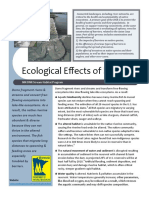 Dams - Ecological Effects