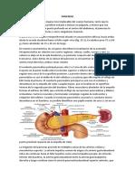 Pancreatitis Crónica Final