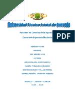 DEBER DE LAS 4P Y 4C GRUPO N°1