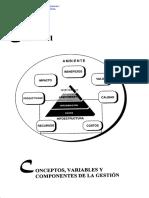 Capítulo I - Gestión de Información en las Organizaciones