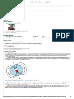 Portal Del Profesor - Fenômenos Magnéticos