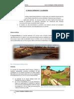 El Medio Ambiente y La Minería -ECOLOGIA